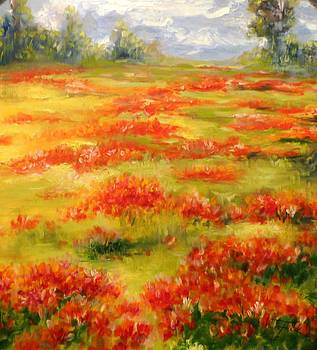 Christa Friedl - poppy field
