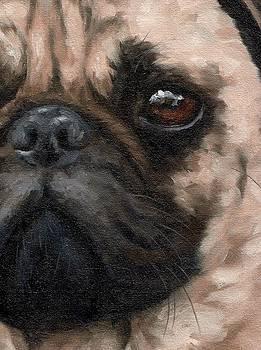 Pug Portrait Painting by Rachel Stribbling