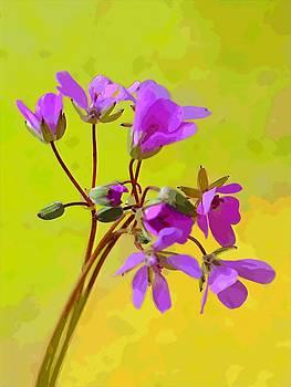 Bishopston Fine Art - Purple Wildflowers