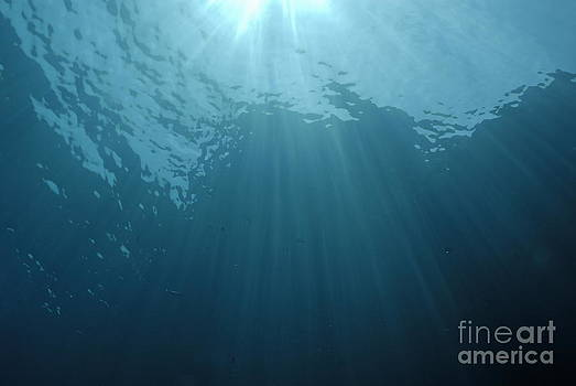 Rays of sunlight shining into water by Sami Sarkis