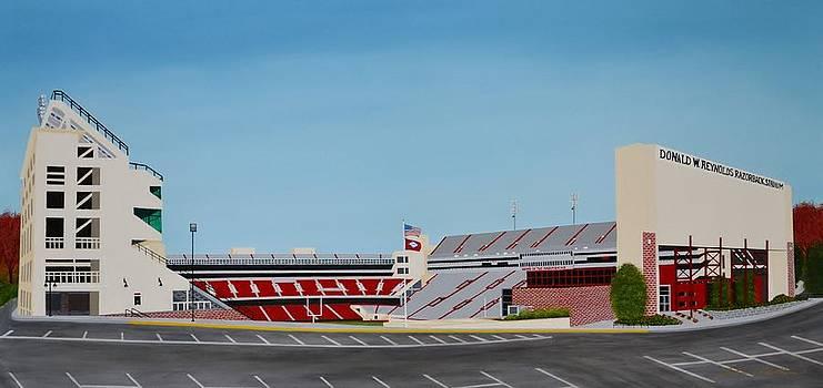 Razorback Stadium by Clinton Cheatham