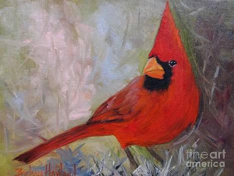 Red Cardinal by Barbara Haviland