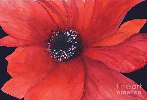 Red poppy flower by Mahsa Watercolor Artist
