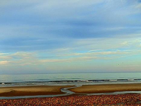 Rexham Sand Flow by Malcolm Lorente