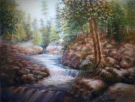 River Falls by Laila Awad Jamaleldin