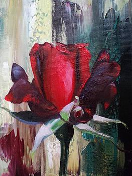 Rose by Nelu Gradeanu