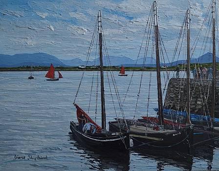 Roundstone Harbour Connemara Co Galway Ireland by Diana Shephard