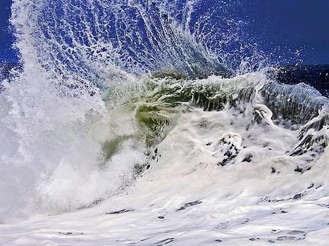 Sea Spray by William Walker