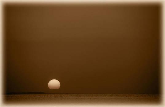 Setting Sun on Lake Sam Rayburn by Max Mullins