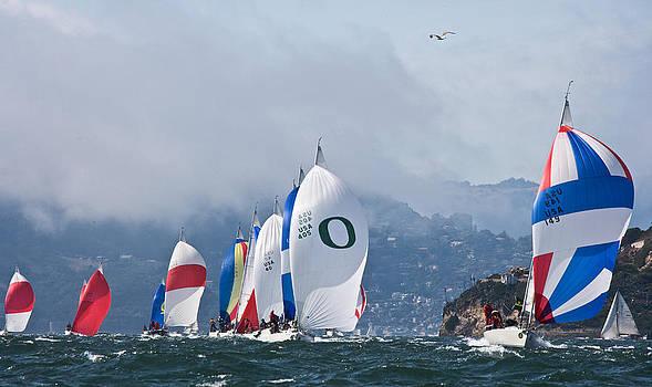 Steven Lapkin - Great Bay Day