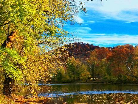 Shenandoah River View by Joyce Kimble Smith