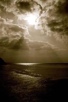 Shine  by AR Annahita