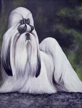 Showdog Shih Tzu by Melinda Saminski