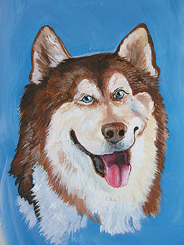Siberian Husky Dog by Barbara Lightner