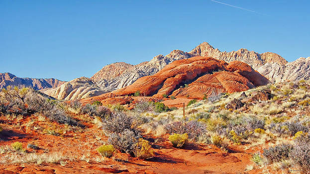 Snow Canyon by SM Shahrokni