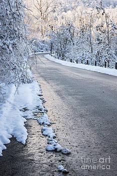 Elena Elisseeva - Snow on winter road