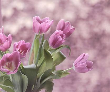 Kim Hojnacki - Song of Spring