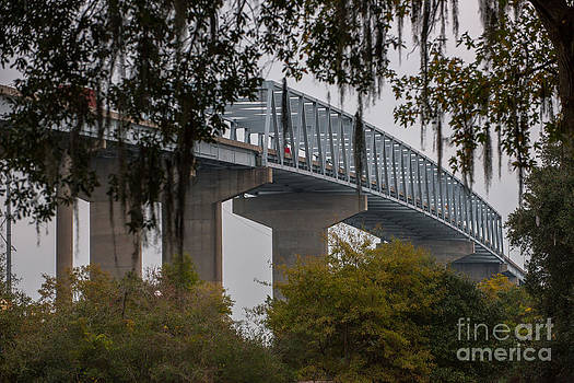 Dale Powell - Spanish Moss Bridge View