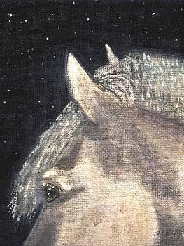 Angela Davies - Spirit Horse