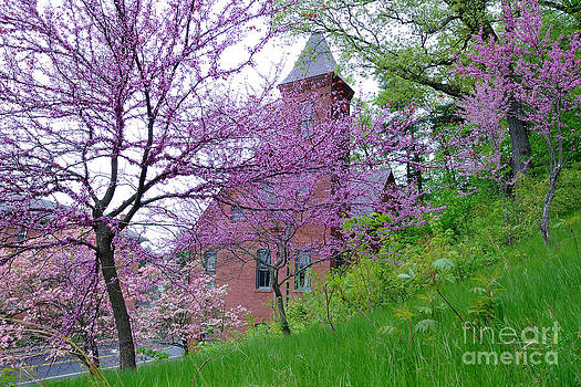 Spring Colors by Edward Sobuta