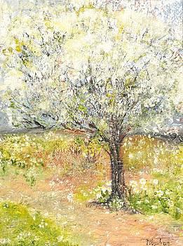 Spring by Evelina Popilian