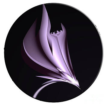 Steel Magnolia Abstract by Heinz G Mielke