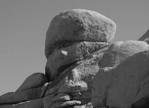 Stone face by Gordon Larson