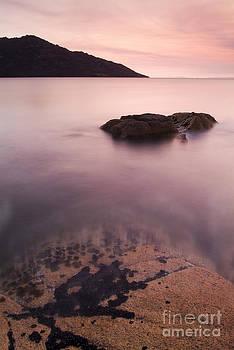 Tim Hester - Sunset Coast