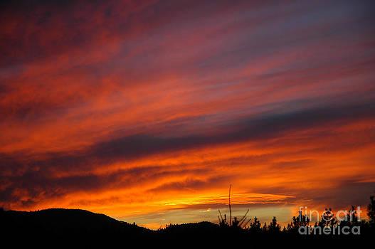 NightVisions - 742P Sunset