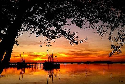 Sunset by Thomas Leon