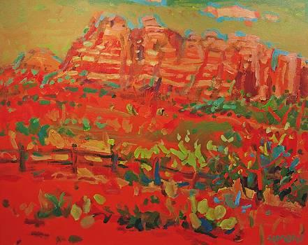 Sw Landscape by Brian Simons