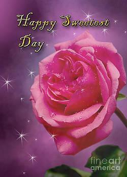 Jeanette K - Sweetest Day Rose