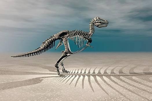 T. Rex Dinosaur Skeleton by Carol & Mike Werner