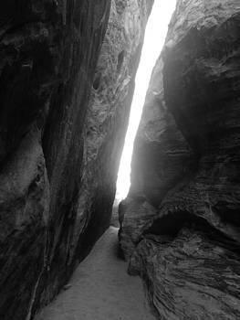 The Light by Kelli Uysaloglu