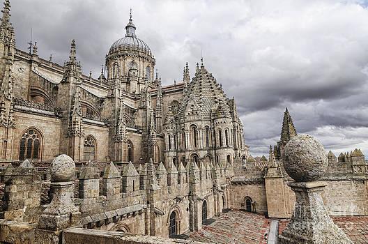 Oscar Gutierrez - The New Cathedral of Salamanca
