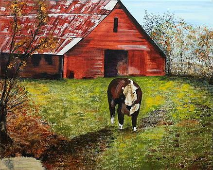 The Old Red Barn by Denise Hills