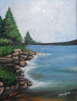 The Shore by Meghna Suvarna