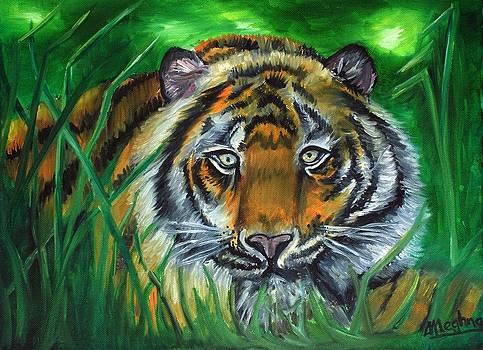 The Tiger Awaits by Meghna Suvarna