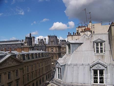 Toits Parisiens - Paris - France by Francoise Leandre