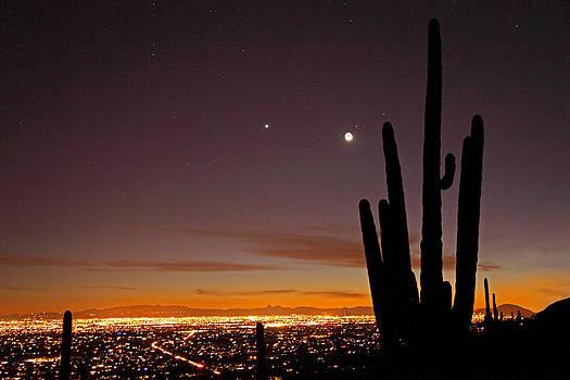 Susan Rovira - Tucson at Dusk