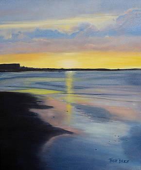 Tybee Island July Sunset by Trish Bilich