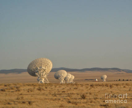 Gregory Dyer - Very Large Array