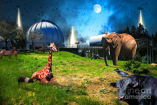 Wingsdomain Art and Photography - Waiting To Be Abducted By The Visitors At The Chabot Space And Science Center In The Hills Of Oaklan