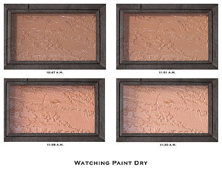 Watching Paint Dry by Lorenzo Laiken