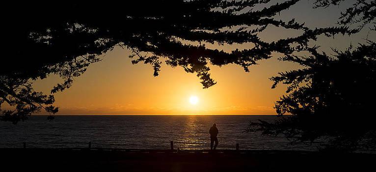 West Coast Sunset Cambria California by Jose M Beltran