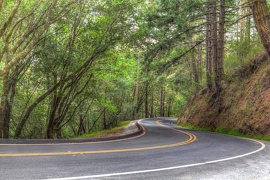 2 Wheel Road by Matthew Riccio