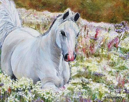 White Horse by Sharon Wilkens