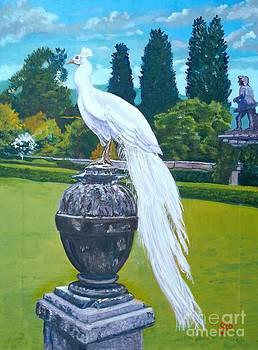 White Peacock II by Frank Giordano