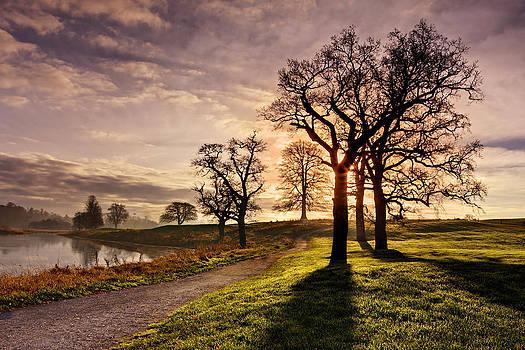 Winter Morning Shadows / Maynooth by Barry O Carroll