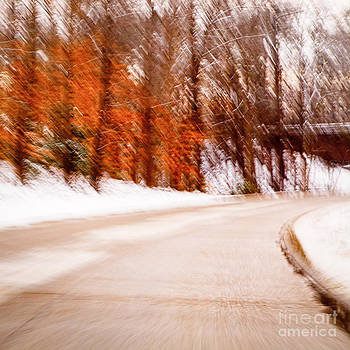 Lisa McStamp - Winter Parkway Two